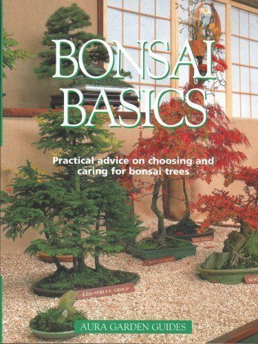BONSAI BASICS, COLINS LEWIS | Paperback Book2002 (USED)